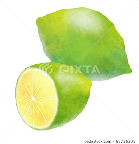 수채화 터치 그린 레몬 65726235