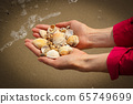 Seashells in hand of woman at beach by sea 65749699