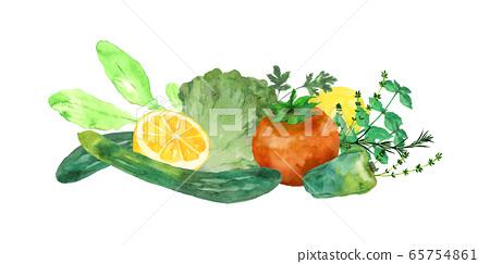 蔬菜和草藥水彩 65754861