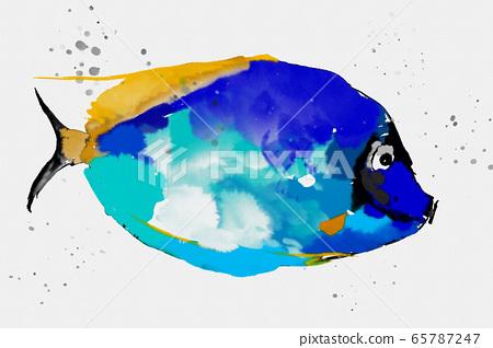 抽像美彩水彩魚 65787247