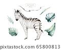 Hand drawn watercolor tropical zebra decoration. Exotic savannah illustrations, zoo jungle tree, brazil trendy art. Perfect for fabric design. 65800813