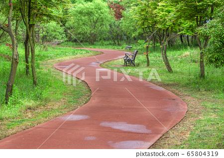 人行道在公園與綠樹和植物 65804319