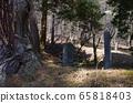 水戶七日塚(Nakasendo Wada Pass)(長野縣下mo訪市) 65818403
