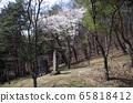 水戶七日塚(Nakasendo Wada Pass)(長野縣下mo訪市) 65818412