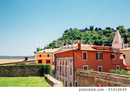 City walls and old town on the hill at summer in Piran, Slovenia 65818649