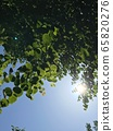 Bright sunbeams 65820276