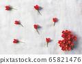 紅色的花 65821476