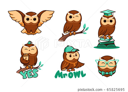 Set of cute owls in vector. Collection bird logos, cartoon character, logotypes, badges, labels, stickers, emblems 65825695