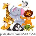 Group of wild animal 65842558