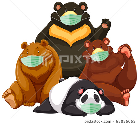 Four type of bear cartoon character wearing mask 65856065