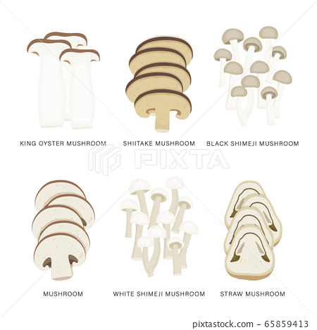 Set of Mushroom Vegetable Slices. Organic and healthy food isolated element Vector illustration. 65859413