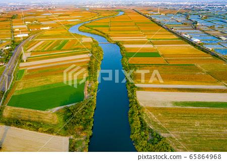 臺灣台南將軍麥田及稻田Tainan General Wheat and Rice Fields 65864968