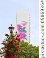 公寓,外牆,牆,玫瑰,繪畫 65869364