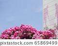玫瑰公寓 65869499