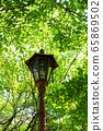 鮮綠色,路燈 65869502