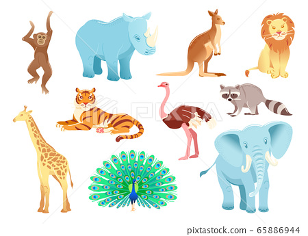 Cartoon character animals set Isolated on white background. Funny zoo shapes. Vector illustration object. Flat collection Rhinoceros kangaroo Ostrich tiger lion elephant monkey giraffe raccoon 65886944