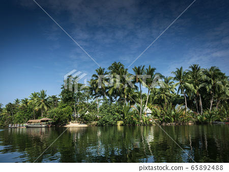 traditional jungle boat at pier on tatai river in 65892488