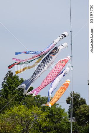 鯉魚飄帶 65897750