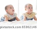 嬰兒雙胞胎新生兒 65902146