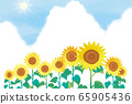 矢量图的夏天花向日葵蓝天 65905436