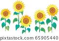 五朵向日葵花的矢量图 65905440