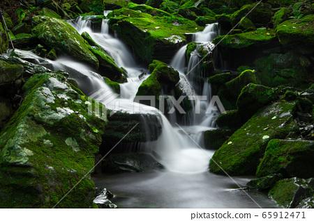 이끼낀 계곡의 물흐름 65912471