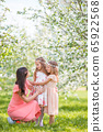 Adorable little girls with young mother in blooming cherry garden on beautiful spring day 65922568