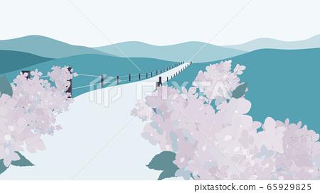 Mountain landscape with hydrangea garden along the road 65929825