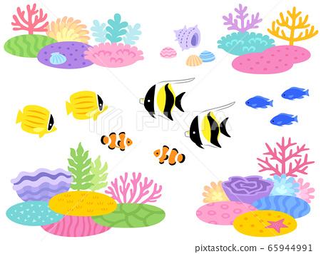산호초와 열대어의 일러스트 세트 65944991