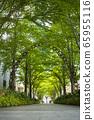 Sidewalk around Yodoyabashi in Kita Ward, Osaka City, Osaka Prefecture 65955116