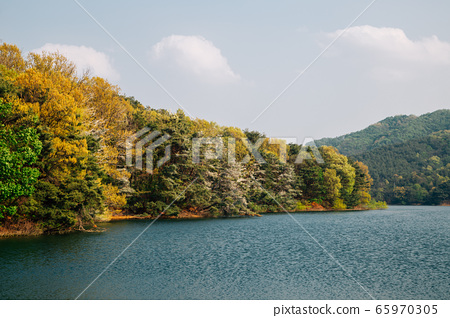 Geumgwang Lake with trees in Anseong, Korea 65970305