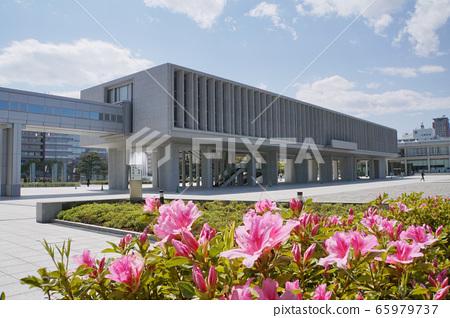廣島和平紀念資料館和杜鵑花 65979737