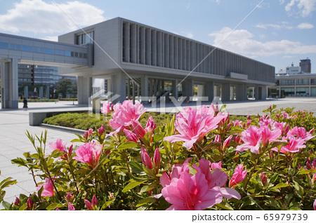 廣島和平紀念資料館和杜鵑花 65979739