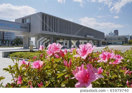 廣島和平紀念資料館和杜鵑花 65979740