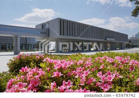 廣島和平紀念資料館和杜鵑花 65979742