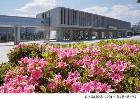 廣島和平紀念資料館和杜鵑花 65979743