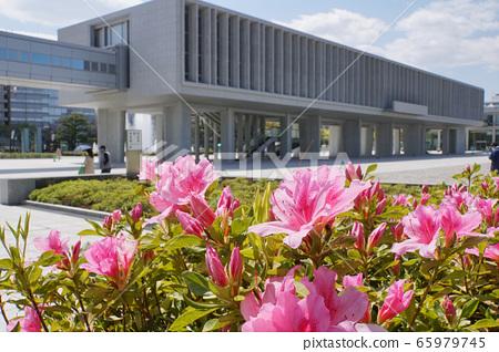 廣島和平紀念資料館和杜鵑花 65979745