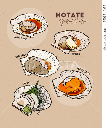 Japanese Scallop Grilled, collection. Hand draw 65984163