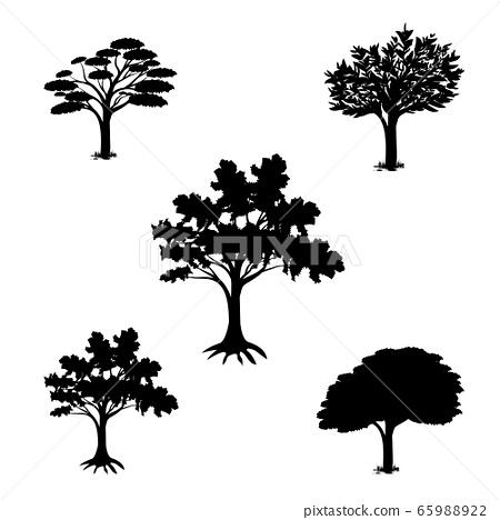 isolated tree on whit background vector design 65988922