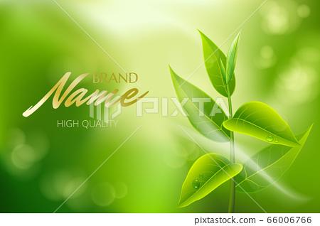 Advertising poster for tea brand for catalog, 66006766