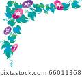夏季花卉牵牛花矢量插画 66011368