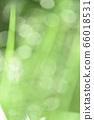 绿色自然背景模糊植物草摘要 66018531