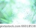 绿色自然背景模糊植物草摘要 66018538