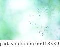 绿色自然背景模糊植物草摘要 66018539