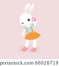 Happy rabbit cartoon character. 66026719