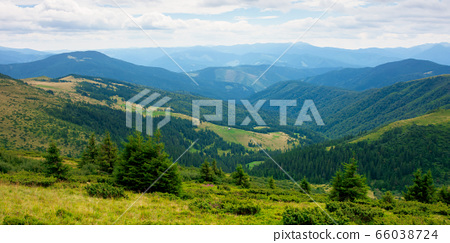 summer landscape of valley in mountains. panoramic 66038724
