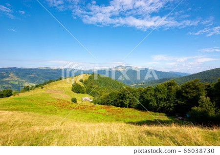 mountain landscape with green meadow on the hill. 66038730