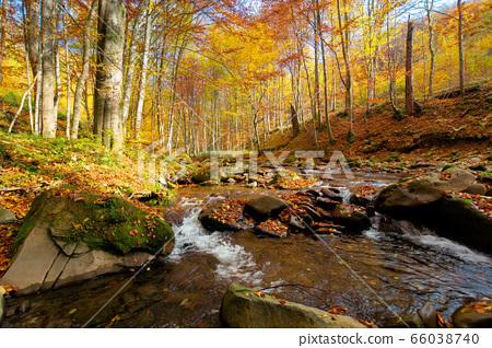 Mountain river in autumn forest. autumn landscape. 66038740