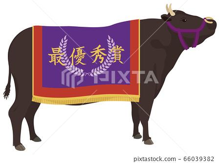 冠軍牛 66039382