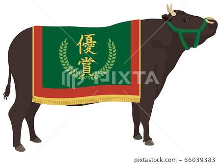 冠軍牛 66039383